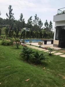 Bể bơi Vĩnh Phúc